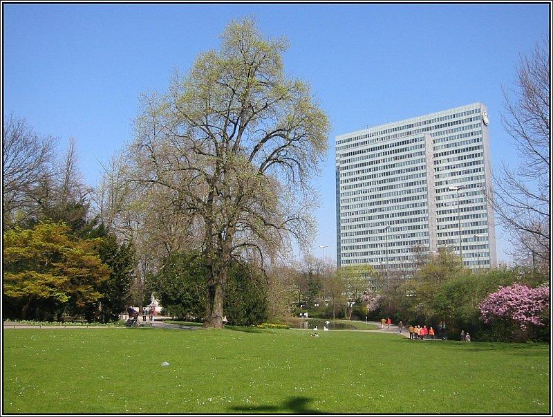 der hofgarten ist ein gro er park in zentrum von. Black Bedroom Furniture Sets. Home Design Ideas